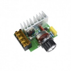 Dimmer Regulador de Velocidad Motor 4000W 0-220V