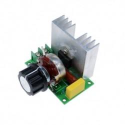 Dimmer Regulador de Velocidad 4000W 220V 2 Salidas